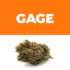 260119_Gage_StrawberryFireOG_Weedmaps_ProductShots