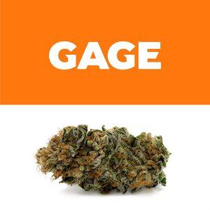 260296_Gage_JDOG_Weedmaps_ProductShots