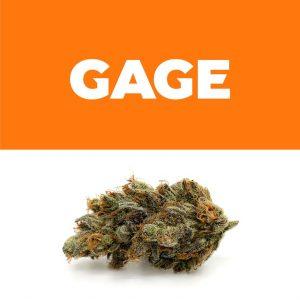 260299_Gage_OrangeCKS_Weedmaps_ProductShots