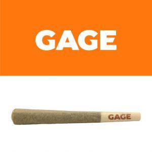 260356_Gage_PreRoll_1x1g